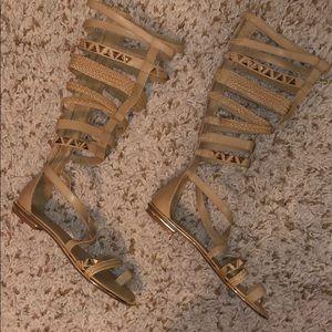 Gladiator Tall Boots